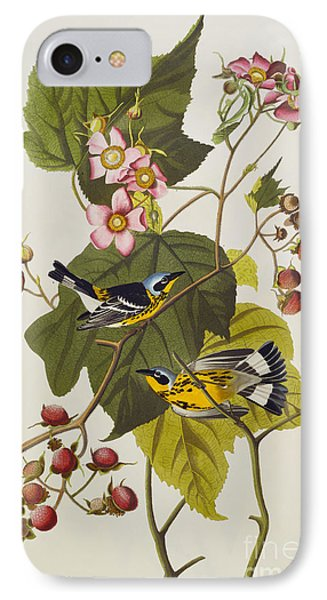 Black And Yellow Warbler IPhone Case by John James Audubon