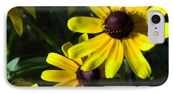 Black Eyed Susan IPhone Case by Mary-Lee Sanders