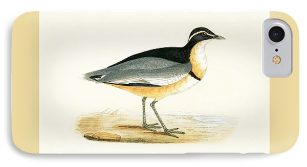 Black Headed Plover IPhone Case by English School