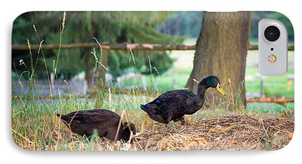 Black Male Indian Runner Ducks IPhone Case by Andrea Obzerova