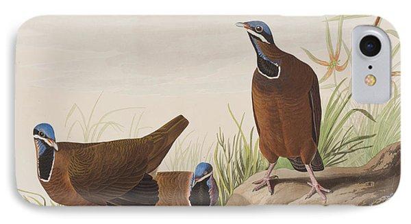 Blue Headed Pigeon IPhone 7 Case by John James Audubon