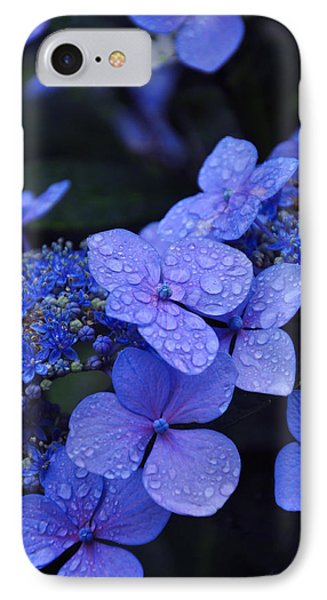 Blue Hydrangea IPhone Case by Noah Cole