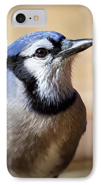 Blue Jay Portrait IPhone Case by Al  Mueller