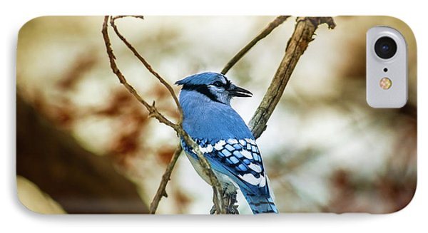 Blue Jay IPhone 7 Case by Robert Frederick