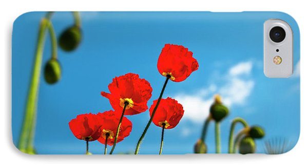 Blue Sky And Poppies Phone Case by Tamyra Ayles