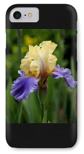 Blue Yellow Iris Germanica IPhone Case by Rona Black