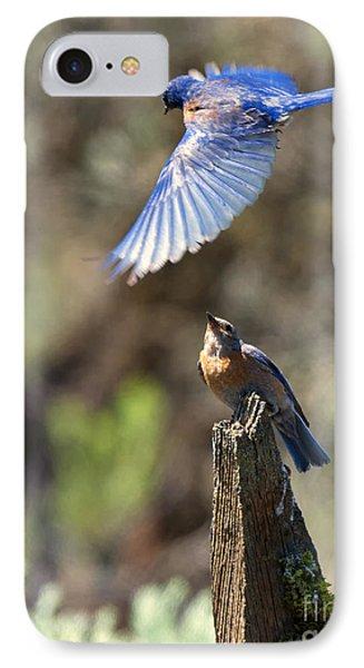 Bluebird Buzz IPhone 7 Case by Mike Dawson