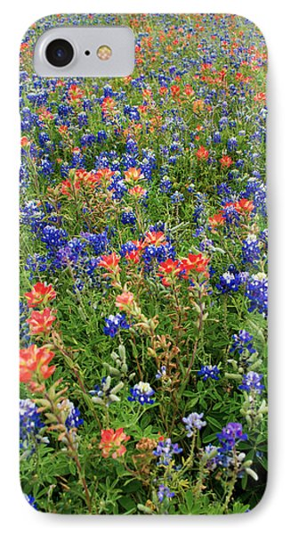 Bluebonnets And Paintbrushes 3 - Texas IPhone Case by Brian Harig