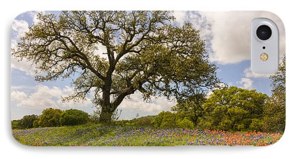 Bluebonnets Paintbrush And An Old Oak Tree - Texas Hill Country IPhone Case by Brian Harig
