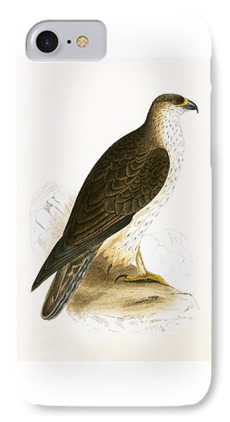 Bonelli's Eagle IPhone Case by English School