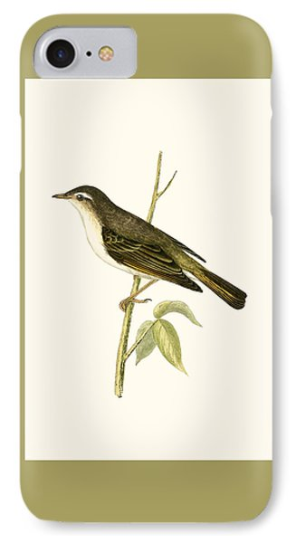 Bonelli's Warbler IPhone Case by English School