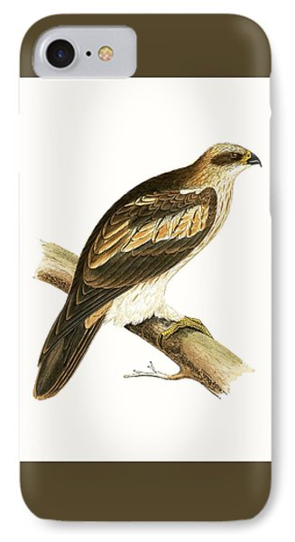 Booted Eagle IPhone Case by English School
