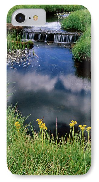 Brooks And Meadows IPhone Case by Soli Deo Gloria Wilderness And Wildlife Photography