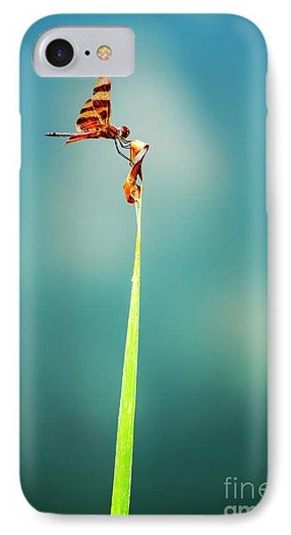 Bug Olympics Xvii Phone Case by Charles Dobbs