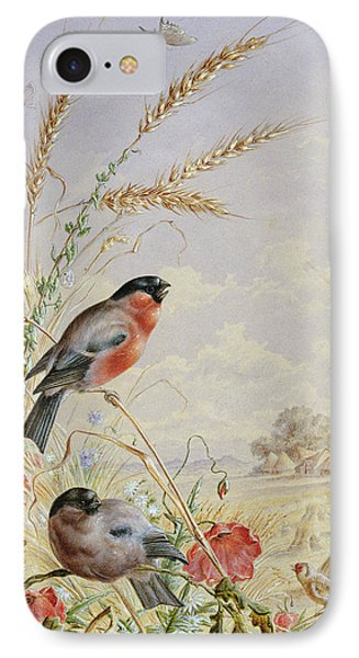 Bullfinches In A Harvest Field IPhone Case by Harry Bright