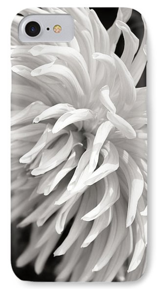 Cactus Dahlia IPhone Case by Wim Lanclus