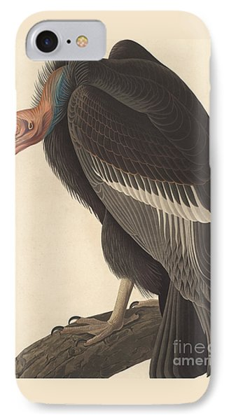 Californian Vulture IPhone 7 Case by John James Audubon