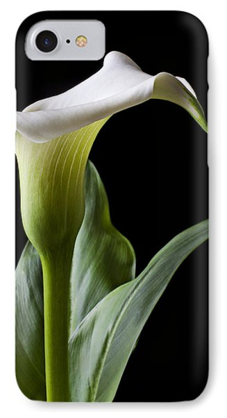 Calla Lily With Drip IPhone 7 Case by Garry Gay