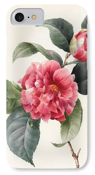 Camellia IPhone Case by Louise D'Orleans