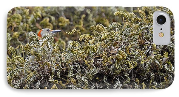 Camouflaged Red-bellied Woodpecker IPhone 7 Case by Carolyn Marshall