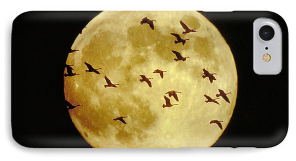 Canda Geese And Moon Phone Case by Kenneth Fink and Photo Researchers