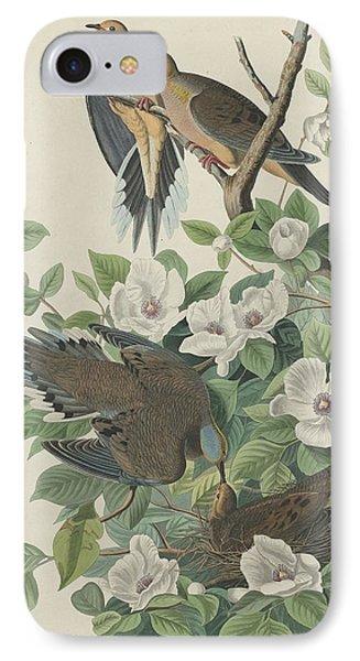 Carolina Pigeon Or Turtle Dove IPhone 7 Case by John James Audubon