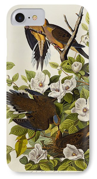 Carolina Turtledove IPhone 7 Case by John James Audubon