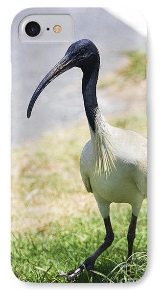 Carpark Ibis IPhone Case by Jorgo Photography - Wall Art Gallery
