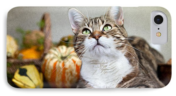 Cat And Pumpkins IPhone 7 Case by Nailia Schwarz