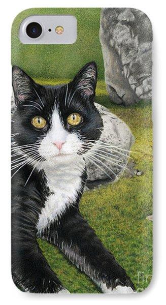 Cat In A Rock Garden IPhone Case by Sarah Batalka