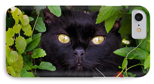 Catboo In The Wild IPhone Case by Shawna Rowe