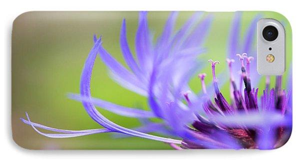 Centaurea Montana IPhone Case by Tim Gainey