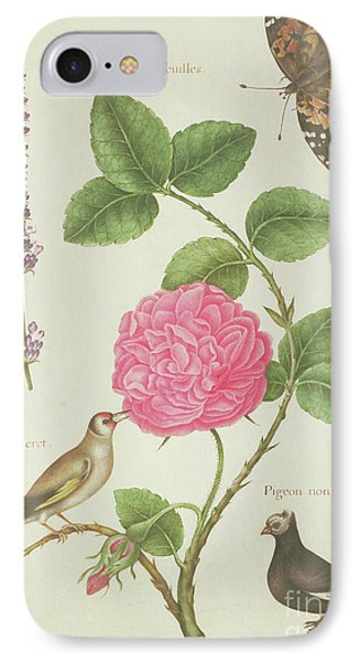 Centifolia Rose, Lavender, Tortoiseshell Butterfly, Goldfinch And Crested Pigeon IPhone Case by Nicolas Robert