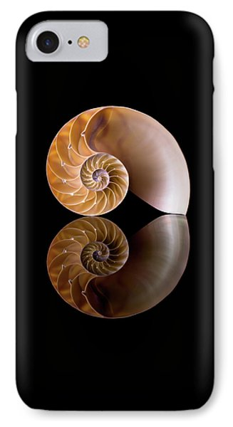 Chambered Nautilus IPhone Case by Jim Hughes