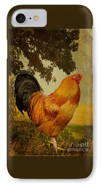 Chanticleer IPhone Case by Lois Bryan