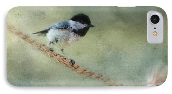 Chickadee At The Shore IPhone Case by Jai Johnson