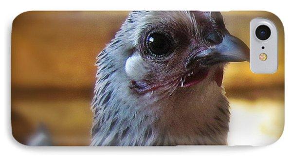 Chicken Little IPhone Case by Krista Carofano