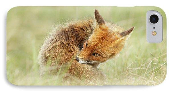 Clean Fox IPhone Case by Roeselien Raimond