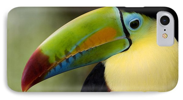 Close-up Of Keel-billed Toucan IPhone Case by Panoramic Images