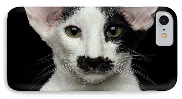 Closeup Funny Oriental Shorthair Looking At Camera Isolated, Bla IPhone Case by Sergey Taran