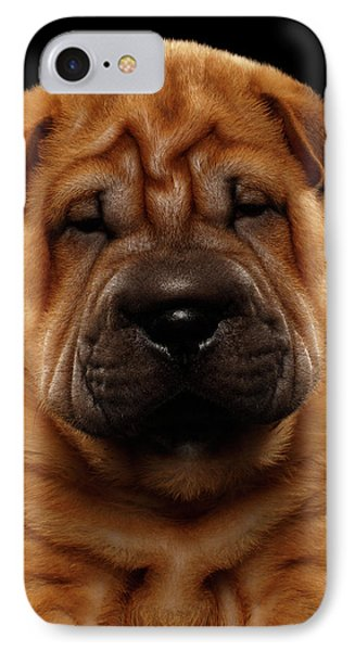 Closeup Funny Sharpei Puppy Isolated On Black IPhone Case by Sergey Taran