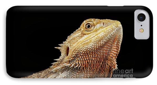 Closeup Head Of Bearded Dragon Llizard, Agama, Isolated Black Background IPhone Case by Sergey Taran