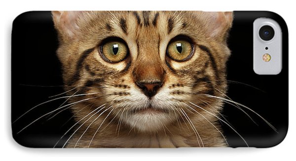 Closeup Portrait Of Bengal Kitty Isolated Black Background IPhone Case by Sergey Taran