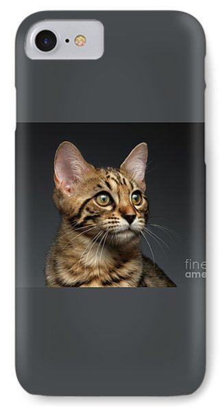 Closeup Portrait Of Bengal Male Kitty On Dark Background IPhone 7 Case by Sergey Taran