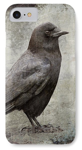 Coastal Crow IPhone Case by Carol Leigh