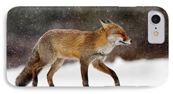 Cold As Ice - Red Fox In A Snow Blizzard IPhone Case by Roeselien Raimond