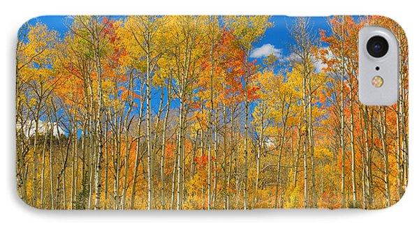 Colorful Colorado Autumn Landscape Phone Case by James BO  Insogna