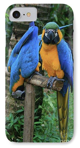 Colourful Macaw Pohakumoa Maui Hawaii Phone Case by Sharon Mau