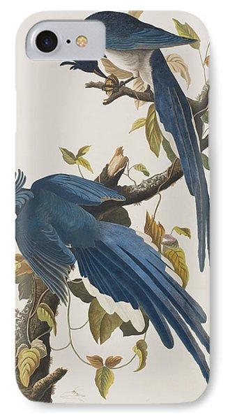 Columbia Jay IPhone Case by John James Audubon