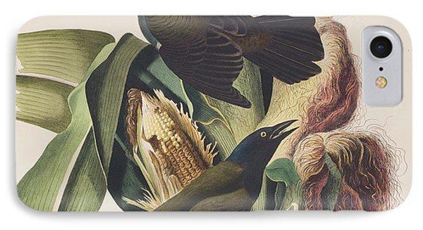 Common Crow IPhone 7 Case by John James Audubon